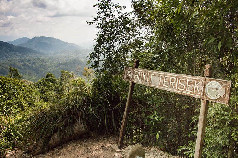 DAILY TOUR : TAMAN NEGARA